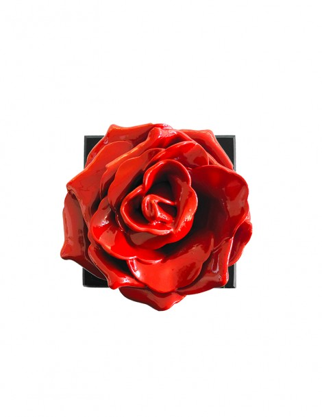 Red Rose Above.